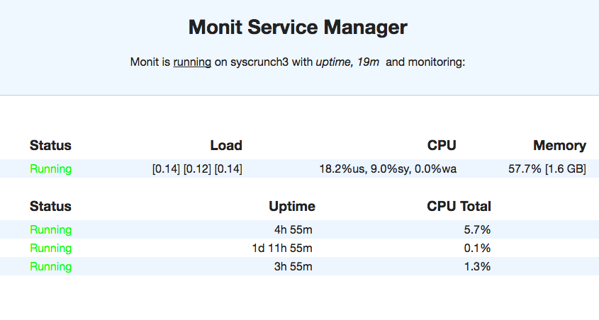 Monit-web-interface-SysCrunch