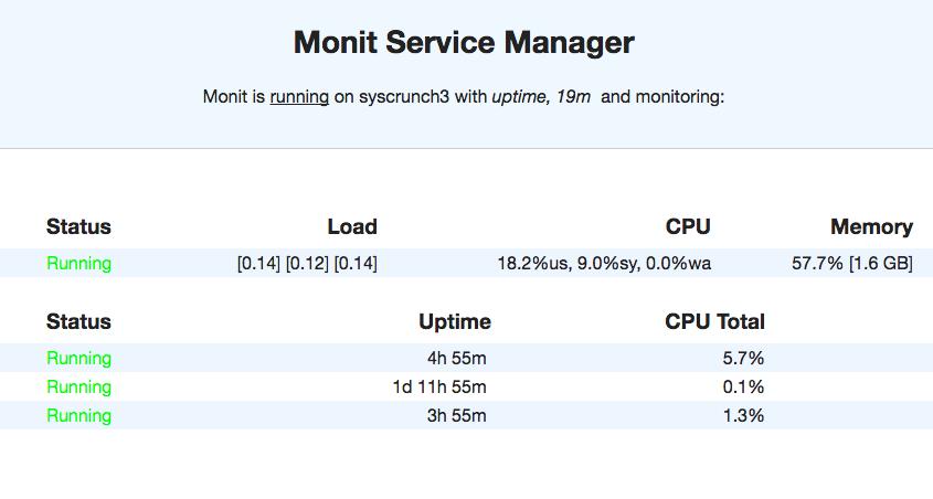 Monit-web-interface-SysCrunch